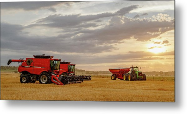 Harvest Delayed Metal Print
