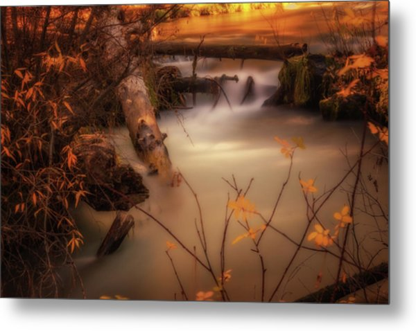 Hat Creek In Gold Metal Print
