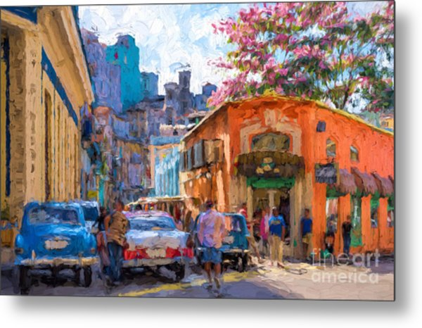 Havana In Bloom Metal Print