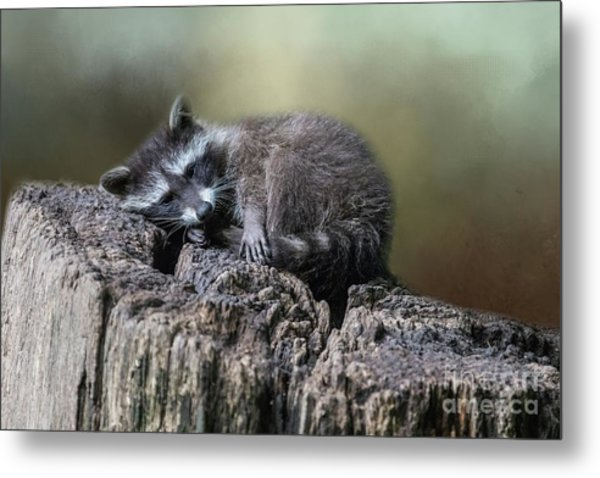 Having A Rest Metal Print