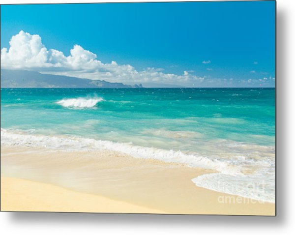 Hawaii Beach Treasures Metal Print