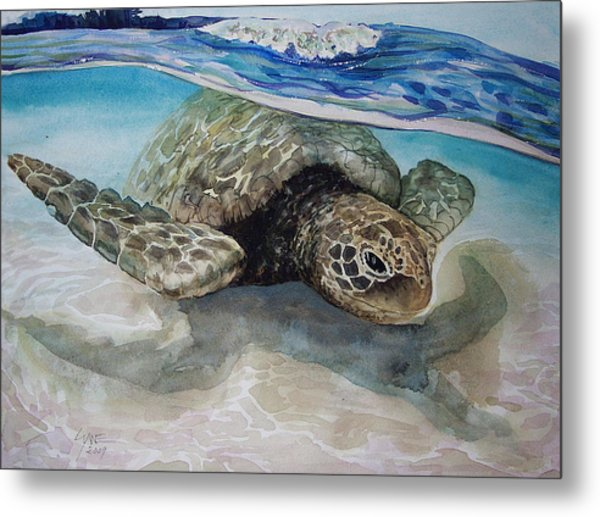 Hawaiin Turtle Metal Print