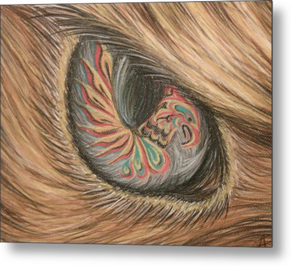 Hawk Eye Thunderbird Metal Print by Alysa Sheats