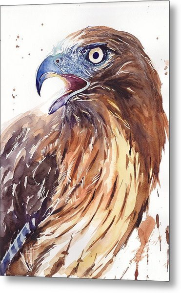 Hawk Watercolor Metal Print