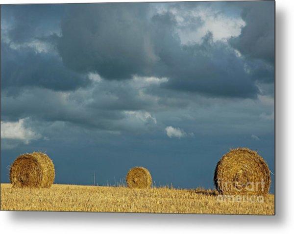 Hay Bales In Harvested Corn Field Metal Print by Sami Sarkis