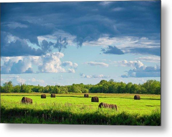 Haystacks In A Meadow Metal Print by Evgeny Buzov