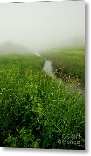Metal Print featuring the photograph Hazy Morning by Sandy Adams