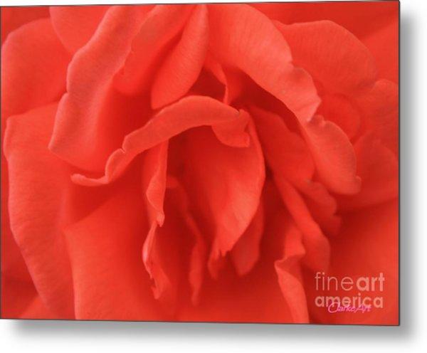 Yoni Rose Metal Print