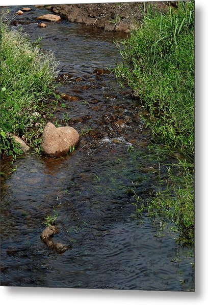 Heart Of The Stream Metal Print