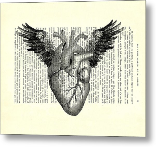 Heart With Wings In Black And White Metal Print