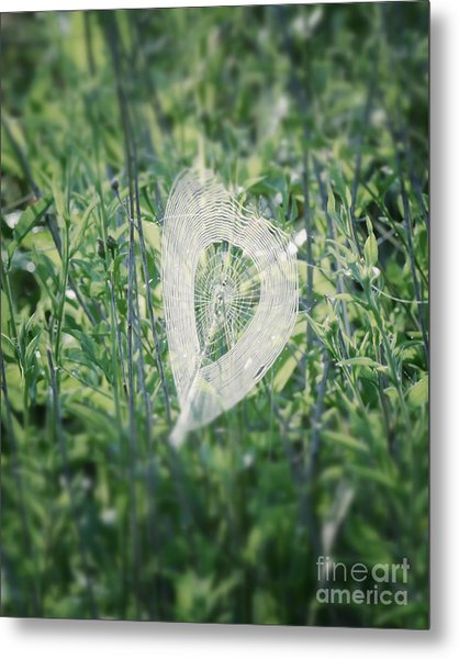Hearts In Nature - Heart Shaped Web Metal Print