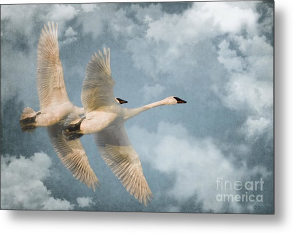 Heavenly Flight Metal Print