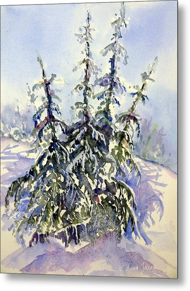 Heavy Snow In The Cascades Metal Print