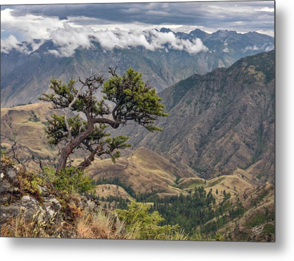 Hells Canyon Metal Print by Leland D Howard