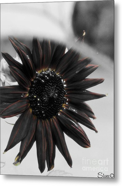 Hells Sunflower Metal Print