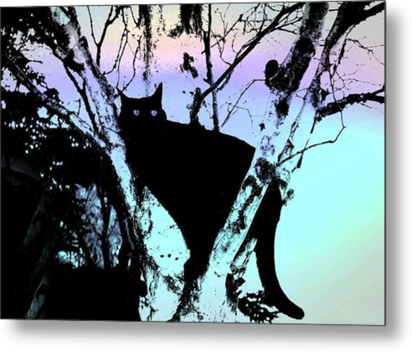 Here Kitty Kitty Metal Print