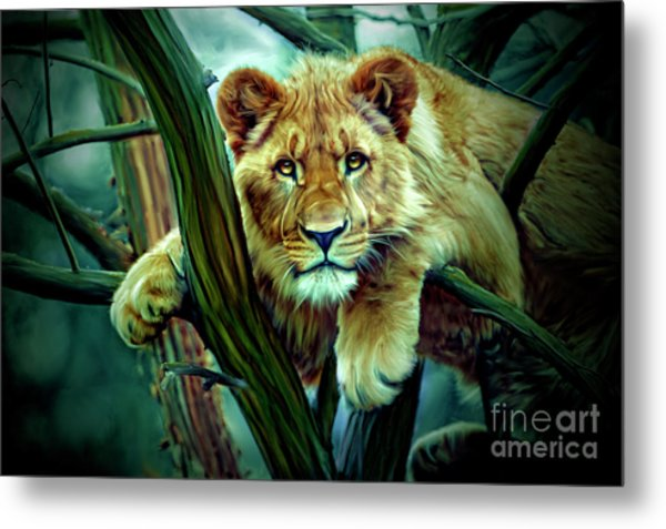 Here, Kitty, Kitty Metal Print