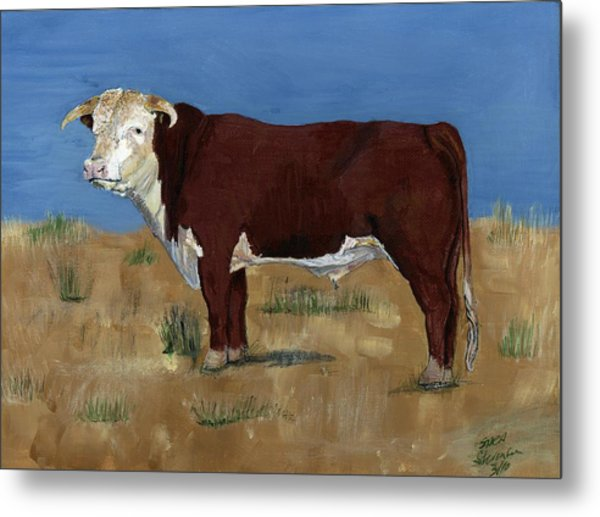Hereford Metal Print