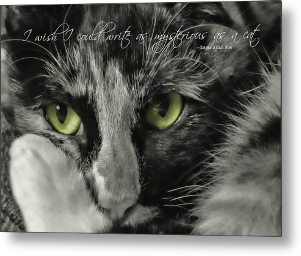 Hermione Quote Metal Print by JAMART Photography
