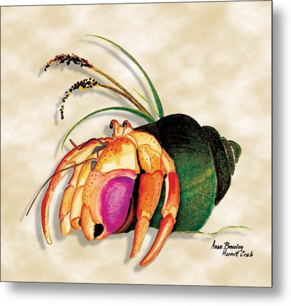 Hermit Crab In Green Shell Metal Print