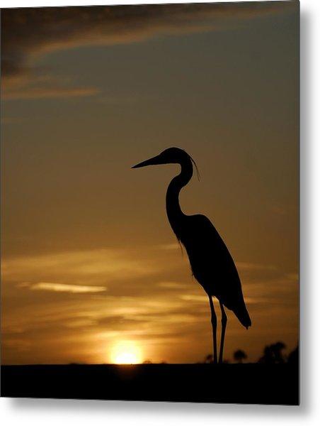 Heron At Sunset Metal Print