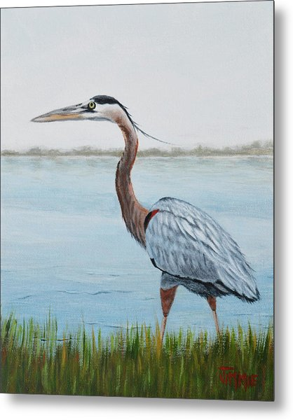 Heron In The Marsh Metal Print