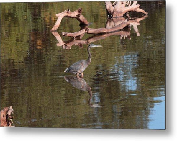 Heron Reflection Metal Print