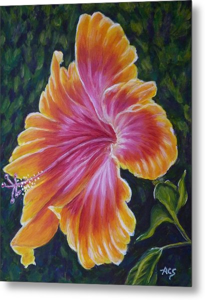 Metal Print featuring the painting Hibiscus by Amelie Simmons
