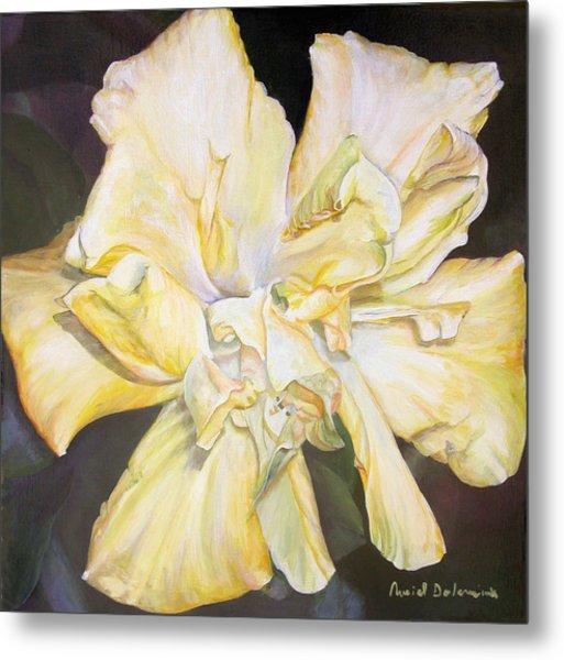 Hibiscus Jaune Metal Print by Muriel Dolemieux