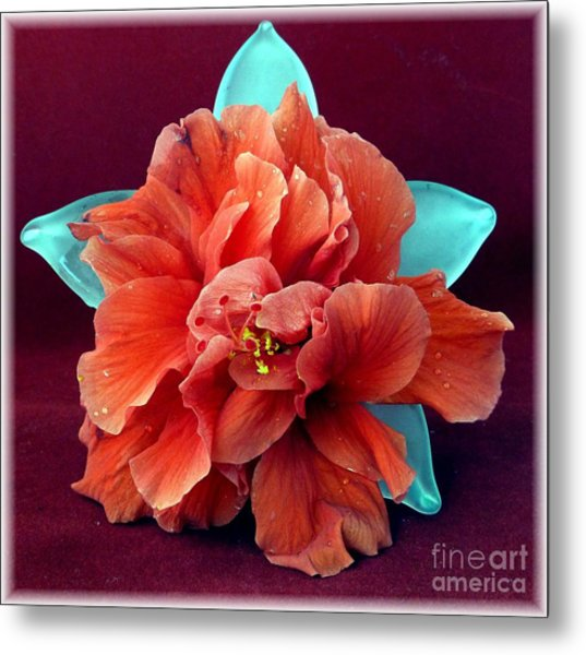 Hibiscus On Glass Metal Print