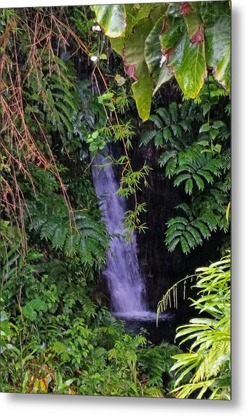 Small Hidden Waterfall  Metal Print