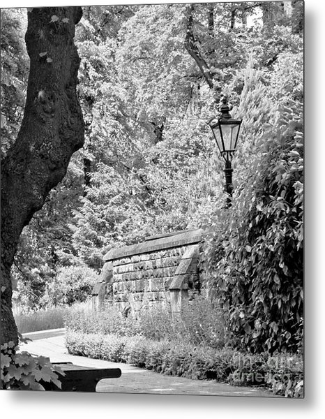 Hiding In Black And White. Metal Print