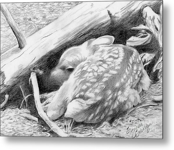 Hiding In Plain Sight - White Tail Deer Fawn Metal Print