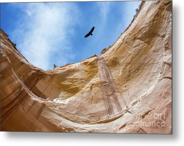 High Above Echo Amphitheater Metal Print