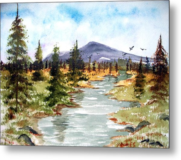 High Country Stream Metal Print