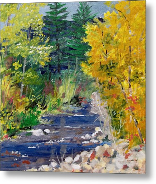 High Mountain Creek  Metal Print