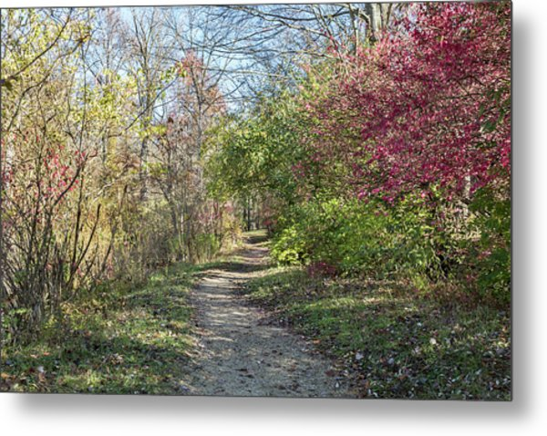 Hiking At Eagle Creek Metal Print