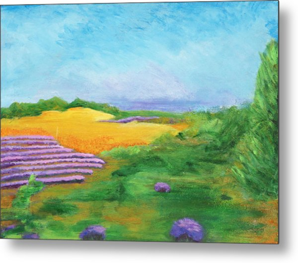 Hill Country Beauty Metal Print
