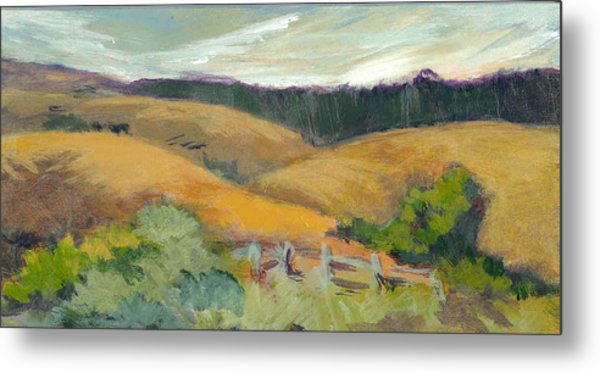 Hills Above Silicon Valley Metal Print by Barbara Moore