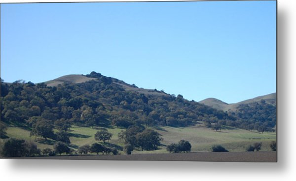 Hills Of Oak Metal Print by Jean Booth