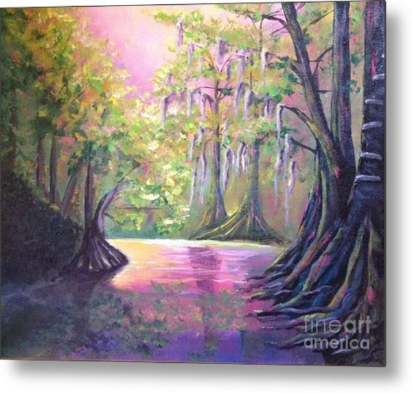 Withlacoochee River Nobleton Florida Metal Print
