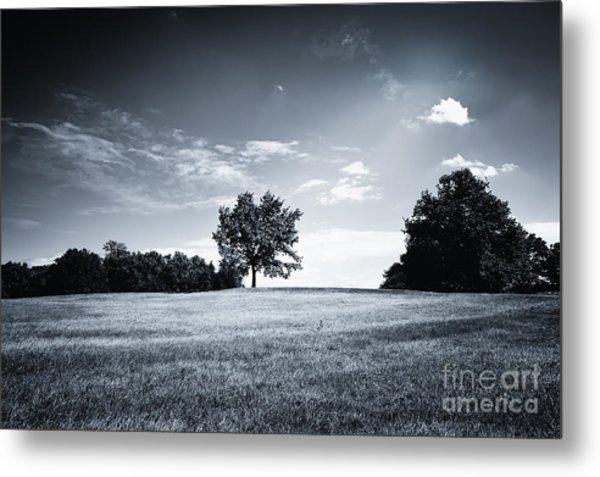 Hilly Black White Landscape Metal Print