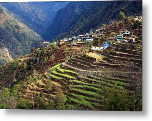 Himalayan Terraced Fields Metal Print