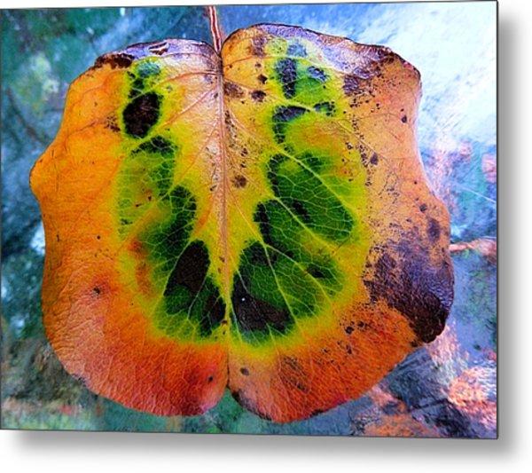 Hippie Leaf Metal Print