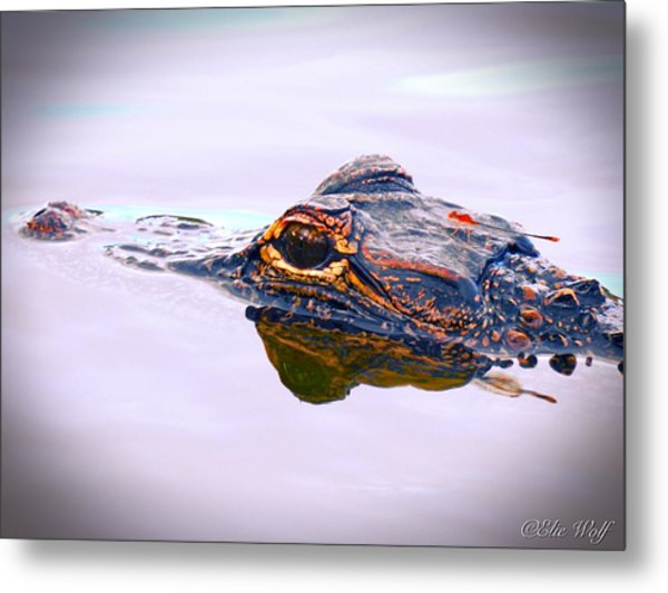 Hitchin A Ride Metal Print