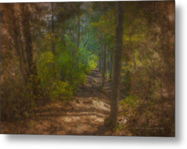Hobbit Path Metal Print