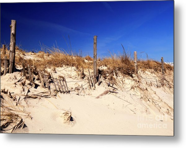 Holgate Beach Dune On Long Beach Island Metal Print by John Rizzuto
