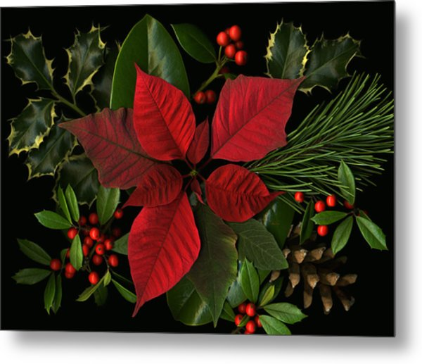 Holiday Greenery Metal Print by Deborah J Humphries