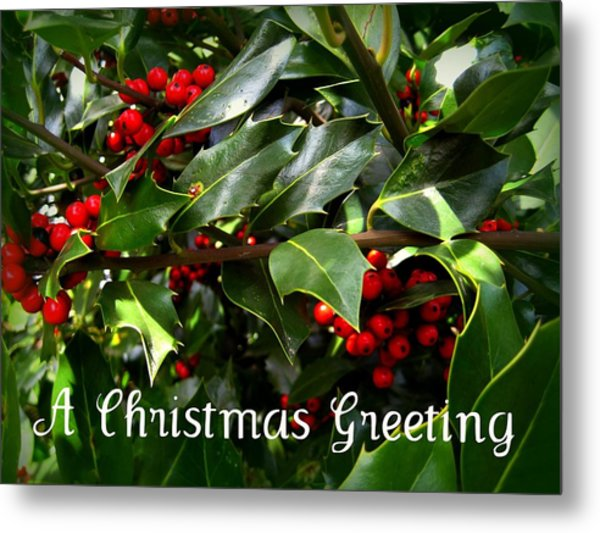 Holly Branches Metal Print