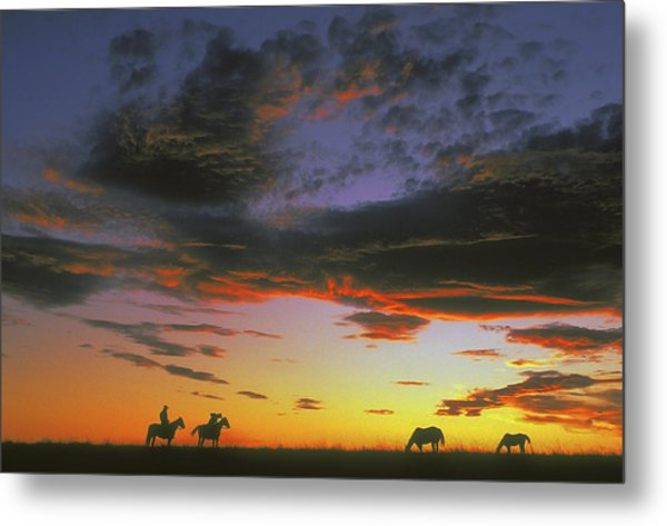 Home On The Range Metal Print by Carl Purcell